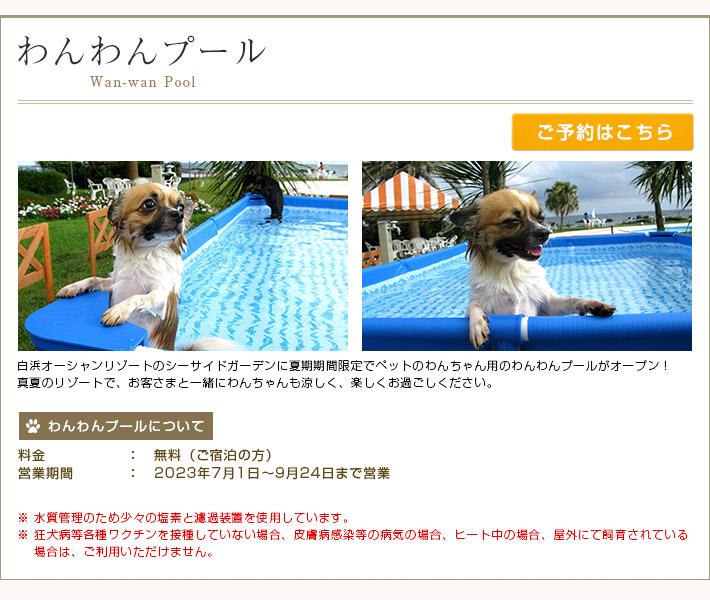 夏にはわんちゃん専用の「わんわんプール」がオープン!わんちゃんと一緒にもっと楽しく夏を過ごそう!